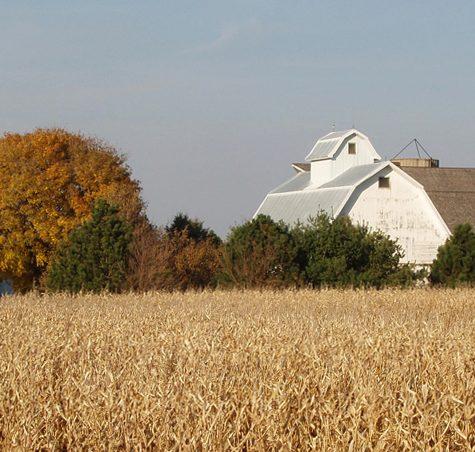 Farmstead DeKalb County IL Farm
